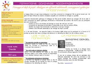 programme managers efficacité relationnelle Palo alto Grenoble 2015