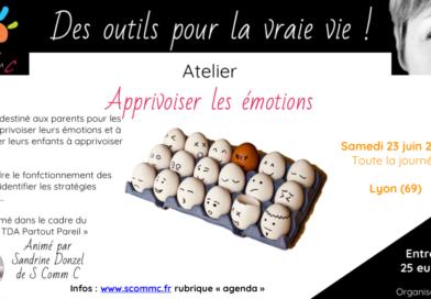 Colloque «TDA/H partout pareil» – ateliers «apprivoiser les émotions» – Lyon – samedi 23 juin 2018